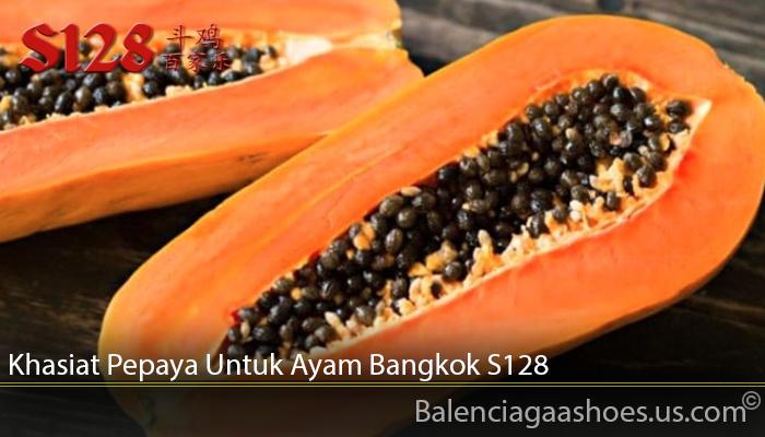 Khasiat Pepaya Untuk Ayam Bangkok S128