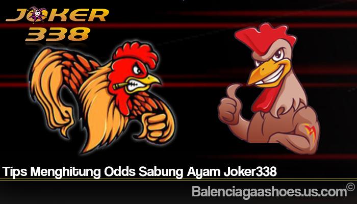 Tips Menghitung Odds Sabung Ayam Joker338